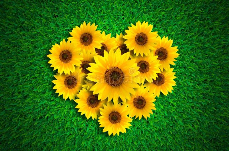 Hjärtaform med solrosor på äng för grönt gräs arkivfoto