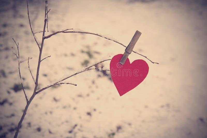 Hjärtaform på en snöig filial arkivbild