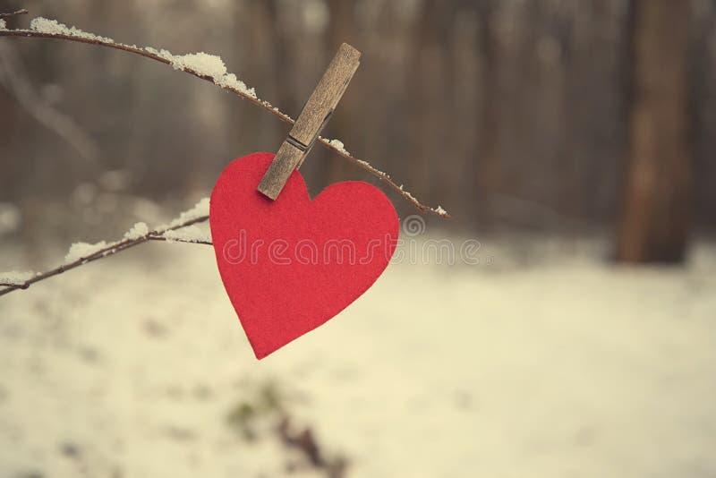 Hjärtaform på en snöig filial royaltyfri bild