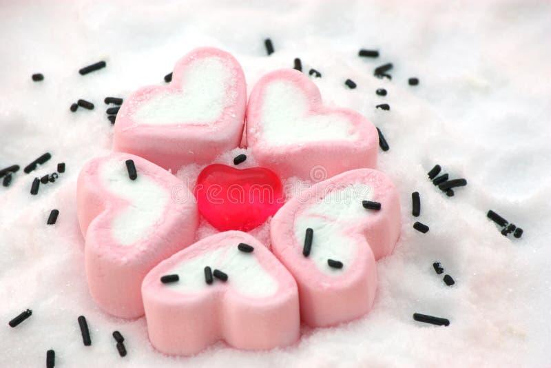 Hjärtaformgodis omkring vid marshmallower på snö royaltyfri bild