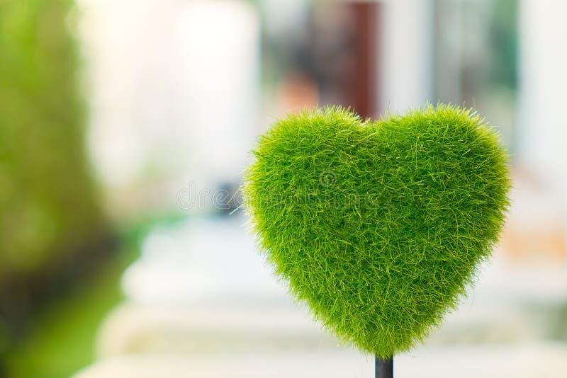 Hjärtaformgräs royaltyfri foto