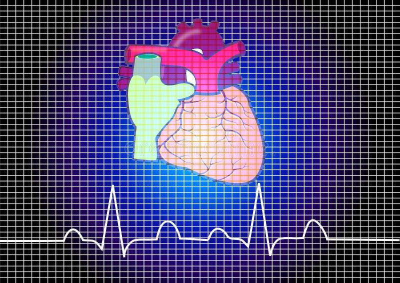 hjärtahuman stock illustrationer