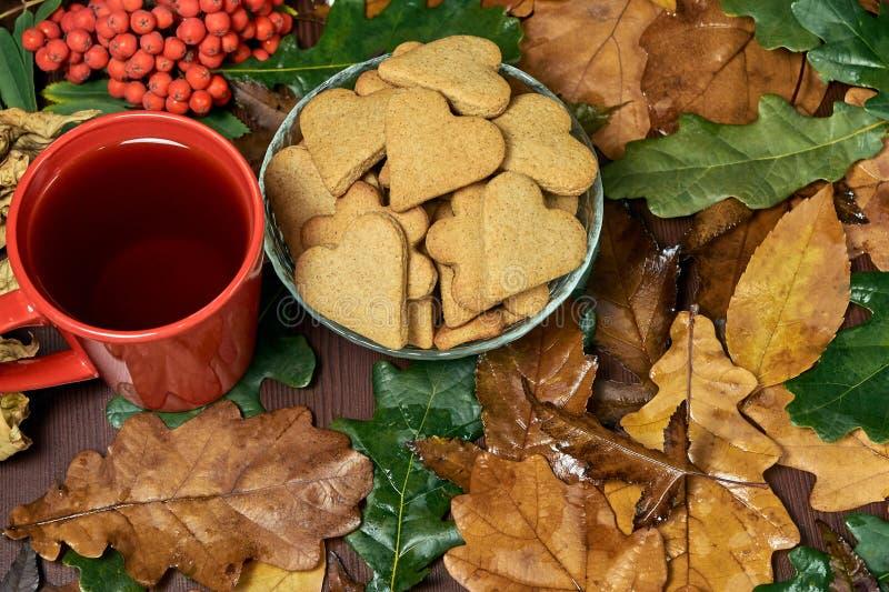 Hjärtakaka olika leaves svart tea isolerad rönnwhite för bakgrund filial fotografering för bildbyråer
