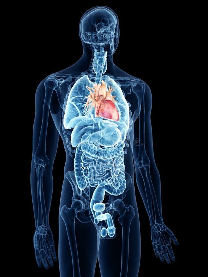 hjärtalampa - rosa stålstil stock illustrationer