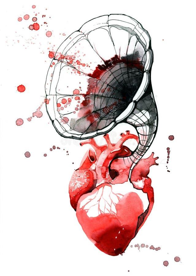 Hjärtaljud stock illustrationer