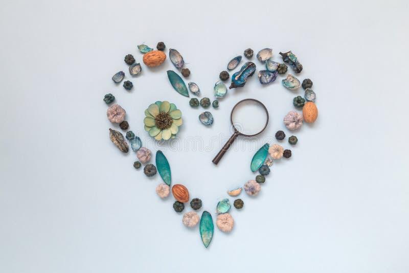 Hjärtasymbol som göras av den olika naturliga saker och förstoringsapparaten Undersök och älska naturbegreppet Lekmanna- lägenhet royaltyfri foto