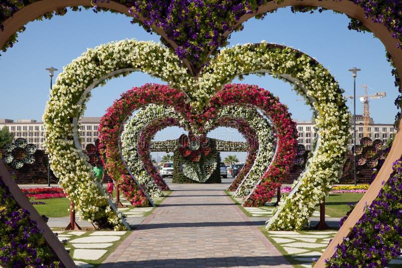 Hjärtor för blommaträdgård, Dubai mirakelträdgård arkivfoto