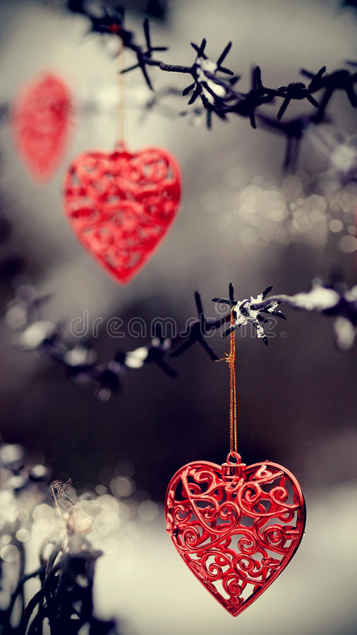 Hjärtor och försett med en hulling - tråd royaltyfri foto