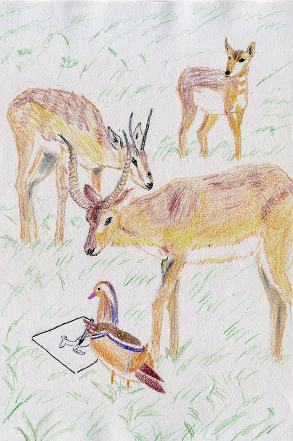 Hjort- och mandarinandteckning stock illustrationer