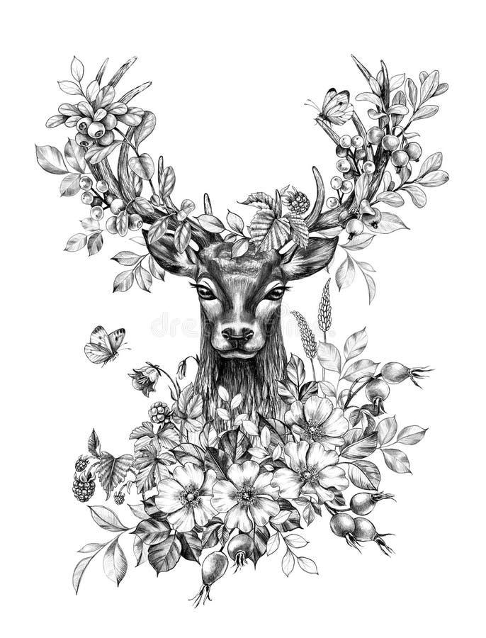 Hjortar med blommor, bär och fjärilar ritar teckningen stock illustrationer