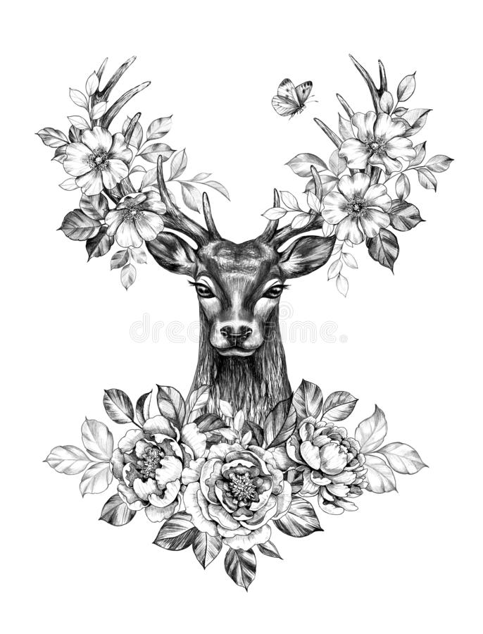 Hjortar med blommor och fjärilsblyertspennateckningen royaltyfri illustrationer