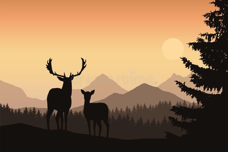 Hjortar och hind i ett berglandskap med barrskogen och royaltyfri illustrationer