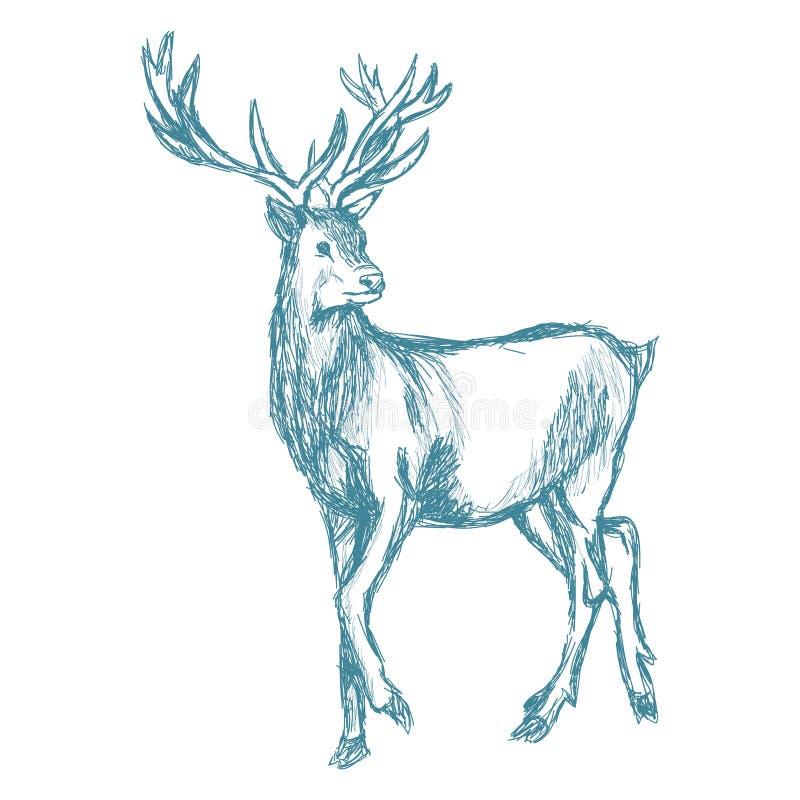 Hjortar skissar blå tappning royaltyfri illustrationer