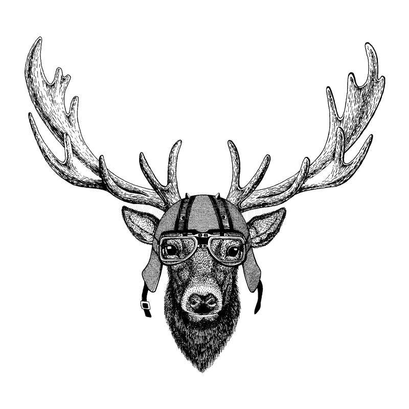 Hjortar som bär en motorcykel, aero hjälm Utdragen bild för hand för tatueringen, t-skjorta, emblem, emblem, logo, lapp stock illustrationer