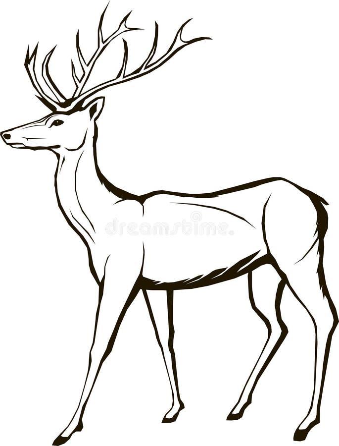 Hjortdjurliv, djur, jul, skog som är horned, fullvuxen hankronhjort, beståndsdel, royaltyfri illustrationer