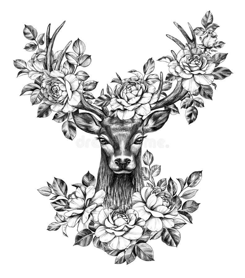 Hjorthuvudet med rosor ritar teckningen stock illustrationer