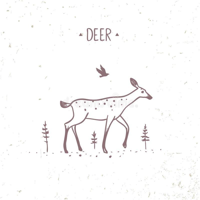 Hjortklotter stock illustrationer