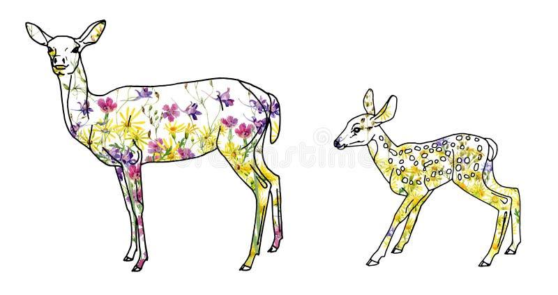 Hjortkvinnlig med en hjort av lösa blommor för vattenfärg stock illustrationer
