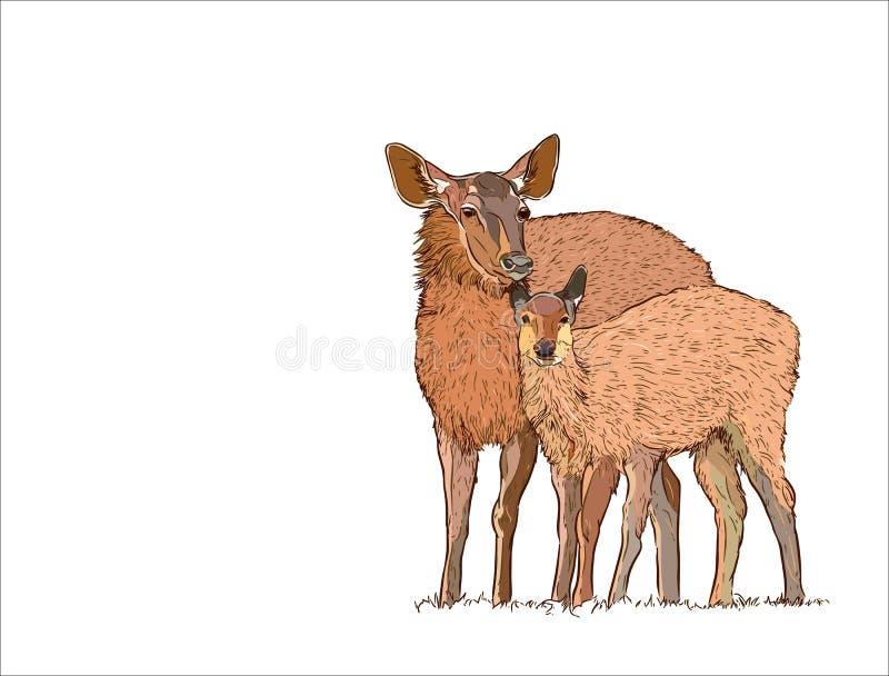 Hjortkvinnlign med behandla som ett barn, handattraktion skissar vektorn royaltyfri illustrationer