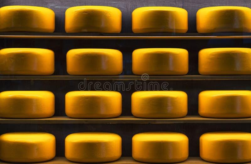 Hjul av ost på wood hyllor arkivfoto