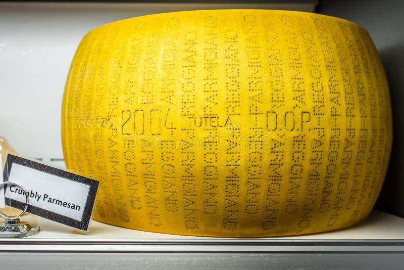 Hjul för parmesanost arkivfoto