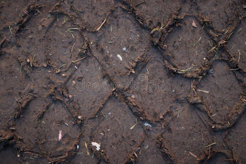 Hjulspår på jorden arkivfoto