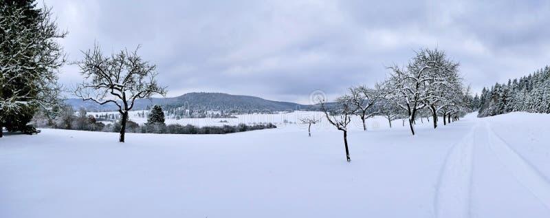 Hlheim del ¼ de MÃ un der valle de Donau, Danubio, Alemania fotografía de archivo