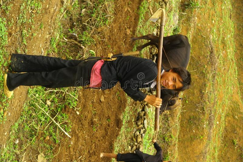 hmong空白年轻人 免版税库存图片