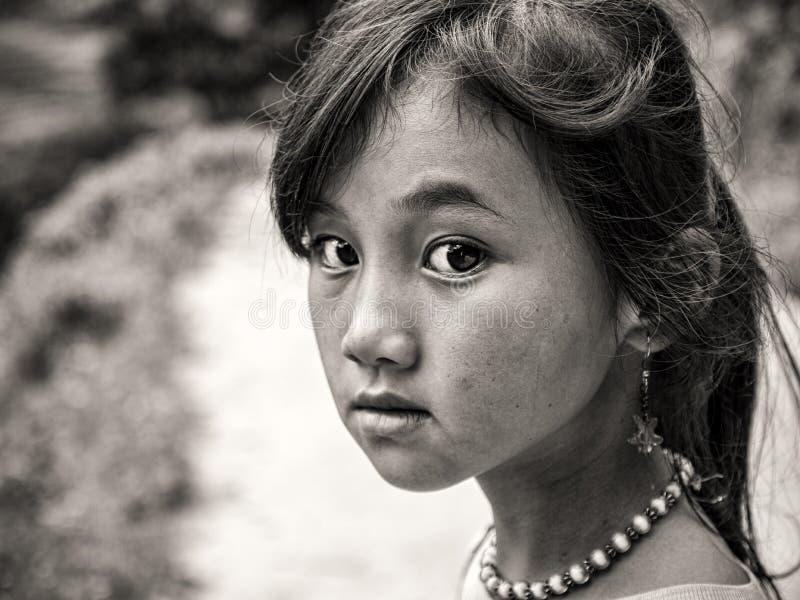 Hmong flicka från Sapa, Vietnam royaltyfri bild