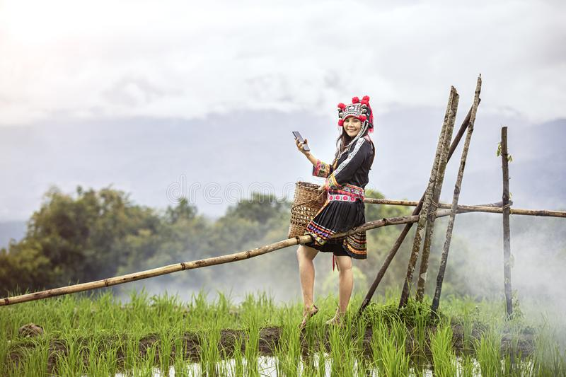 Hmong girl using mobile phone in rice terraces. Ban Pa Bong Piang Northern region in Mae Chaem District Chiangmai Province That. Has the most beautiful rice royalty free stock photography