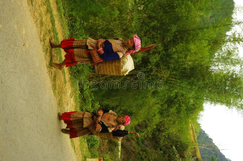 Hmong Women flowered. Hmong women back from the flower market of Muong Khuong. Basket loaded, the eternal umbrella for sun protection such as thunderstorms stock photos