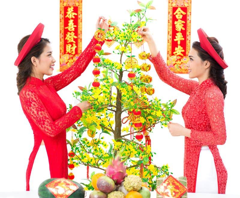 Hoa Mai Decoration foto de stock royalty free