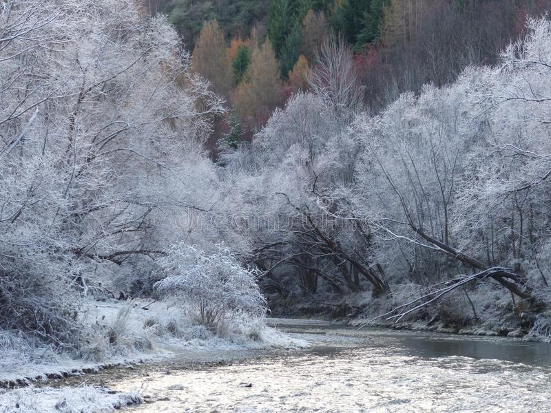 Hoar frost on the Arrow River, Arrowtown, New Zealand stock images
