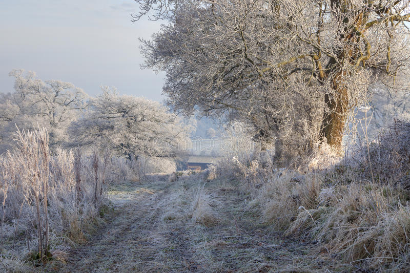 Hoar frost, England. Rural countryside with hoar frost near Chipping Campden, Gloucestershire, England stock images