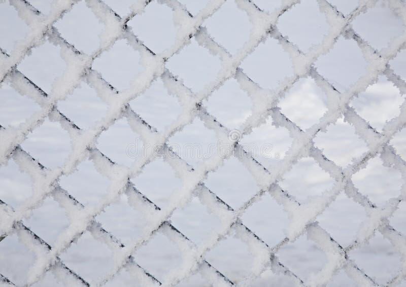 Hoar-Frost-Zaun stockfoto