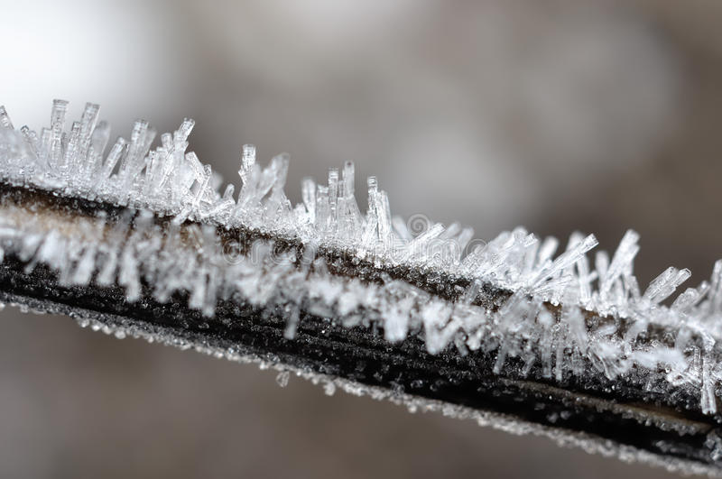 Hoarfrost crystals. stock photography