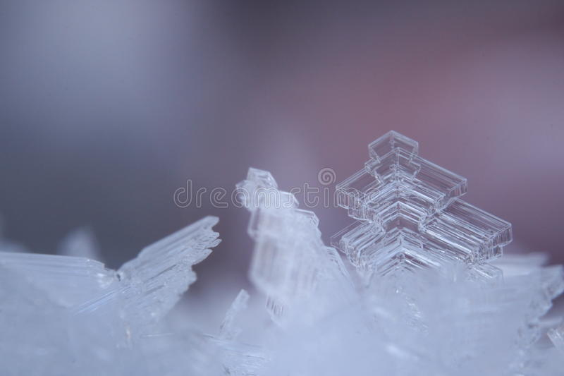 Hoarfrost Ice Crystals in the Arctic Winter stock photo