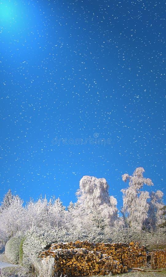Hoarfrost, opad śniegu i światło słoneczne, obraz stock