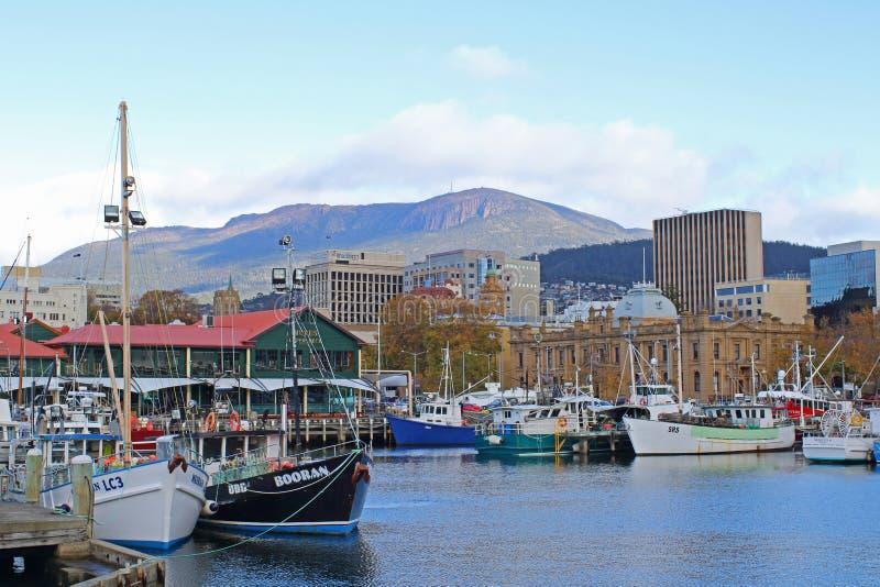 Hobart City View fotografering för bildbyråer