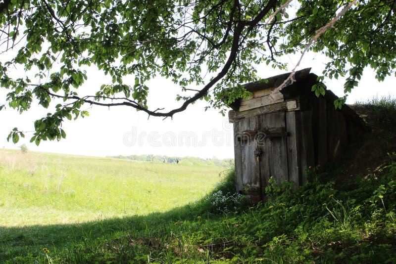 Hobbit房子谷仓在绿色森林草坪 库存图片