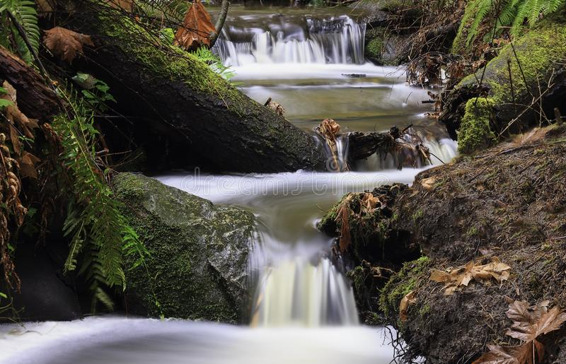 Hobbs Creek at Mystic Vale royalty free stock photography