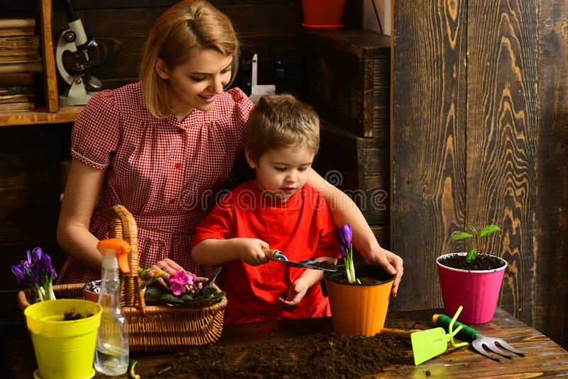 Hobby concept. Little child help woman planting flower in pot with soil, hobby. Indoor gardening as hobby. Enjoy family royalty free stock photography