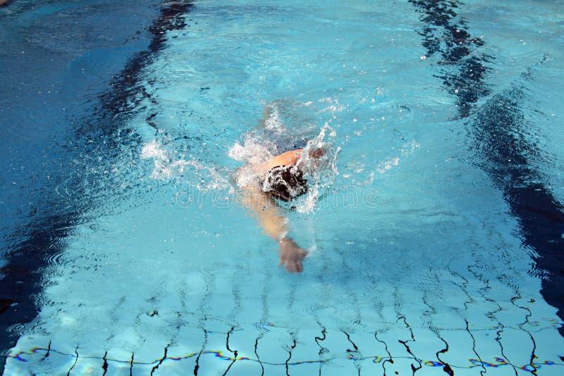 Hobby swimmer swim the crawl. Man swims in swimming pool royalty free stock photo