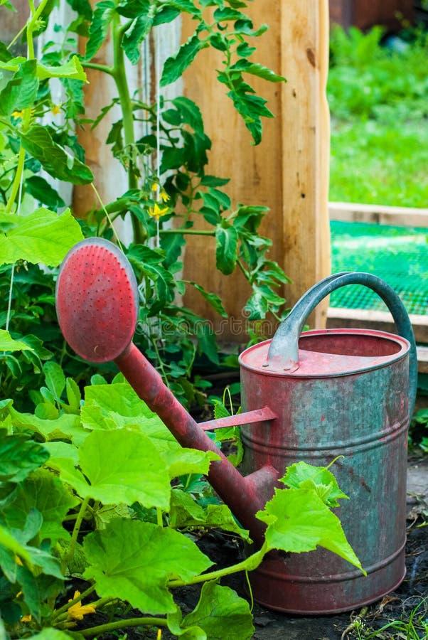 Hobby und Gartenarbeit stockfotos
