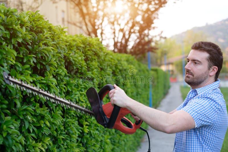 Hobbyistgardner genom att använda en häckclipper i hemträdgården fotografering för bildbyråer