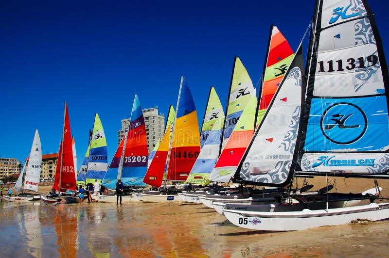 Hobie 16 nacionais Port Elizabeth do SAS imagens de stock royalty free