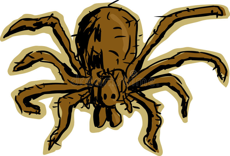 Hobo Spider. Close up top down view of brown, hairy hobo spider over white background royalty free illustration