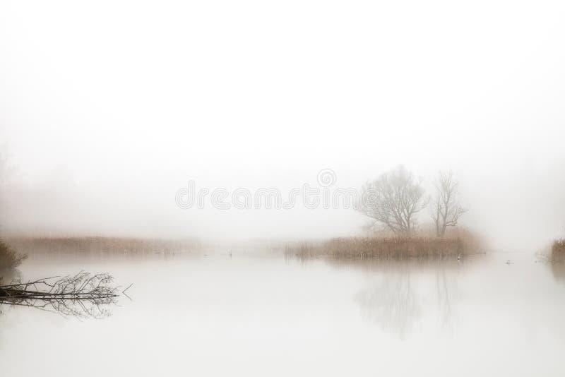 Hoboken, Belgique - un petit lac dans la brume image stock