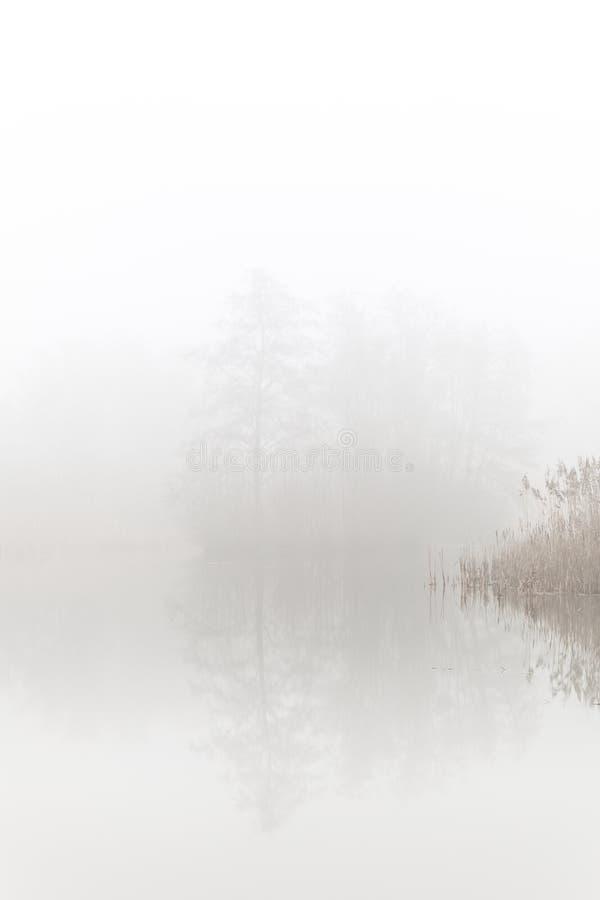 Hoboken, Belgique - un petit lac dans la brume images stock