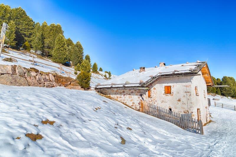 Hoch gelegene Gebirgshütte unter Schnee-mit einer Kappe bedeckten Spitzen und Kiefernvorderteil lizenzfreie stockbilder